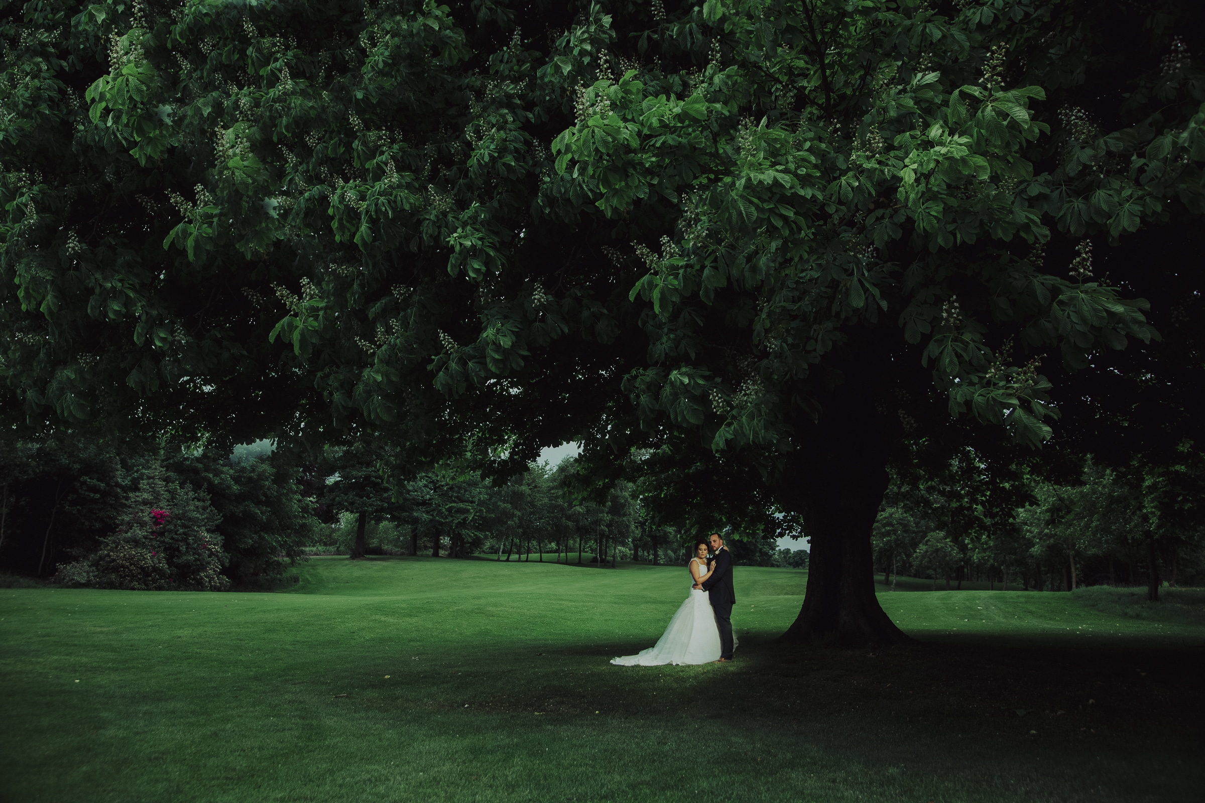 Kristina & Ashley Wedding Crow Nest Park Golf Club photograph of bride and groom under a tree