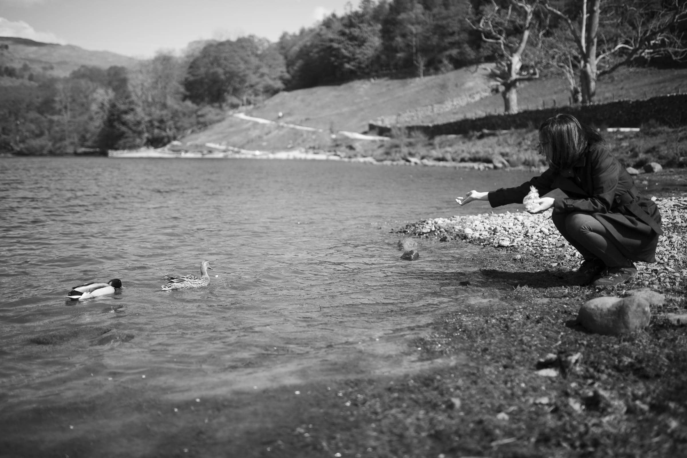 feeding the ducks on a creative couples photoshoot in the lake district cumbria