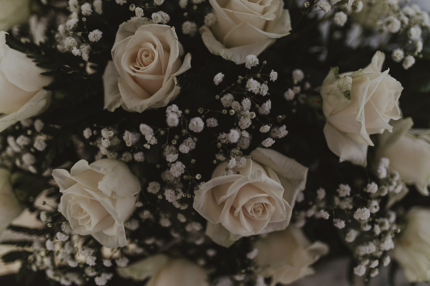 Close up picture of white roses and small white flowers