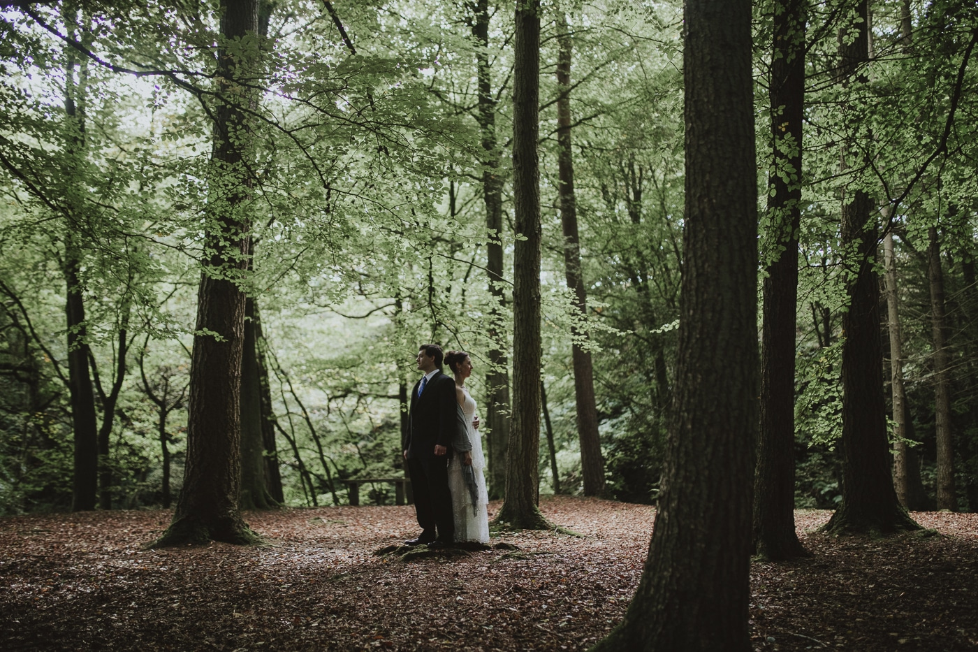 Bride and groom back to back in shaded forest by Joshua Wyborn Photographic