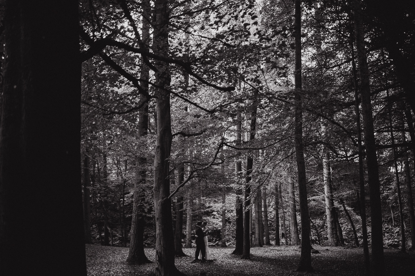 Bride and groom standing in woodland by Joshua Wyborn Photographic