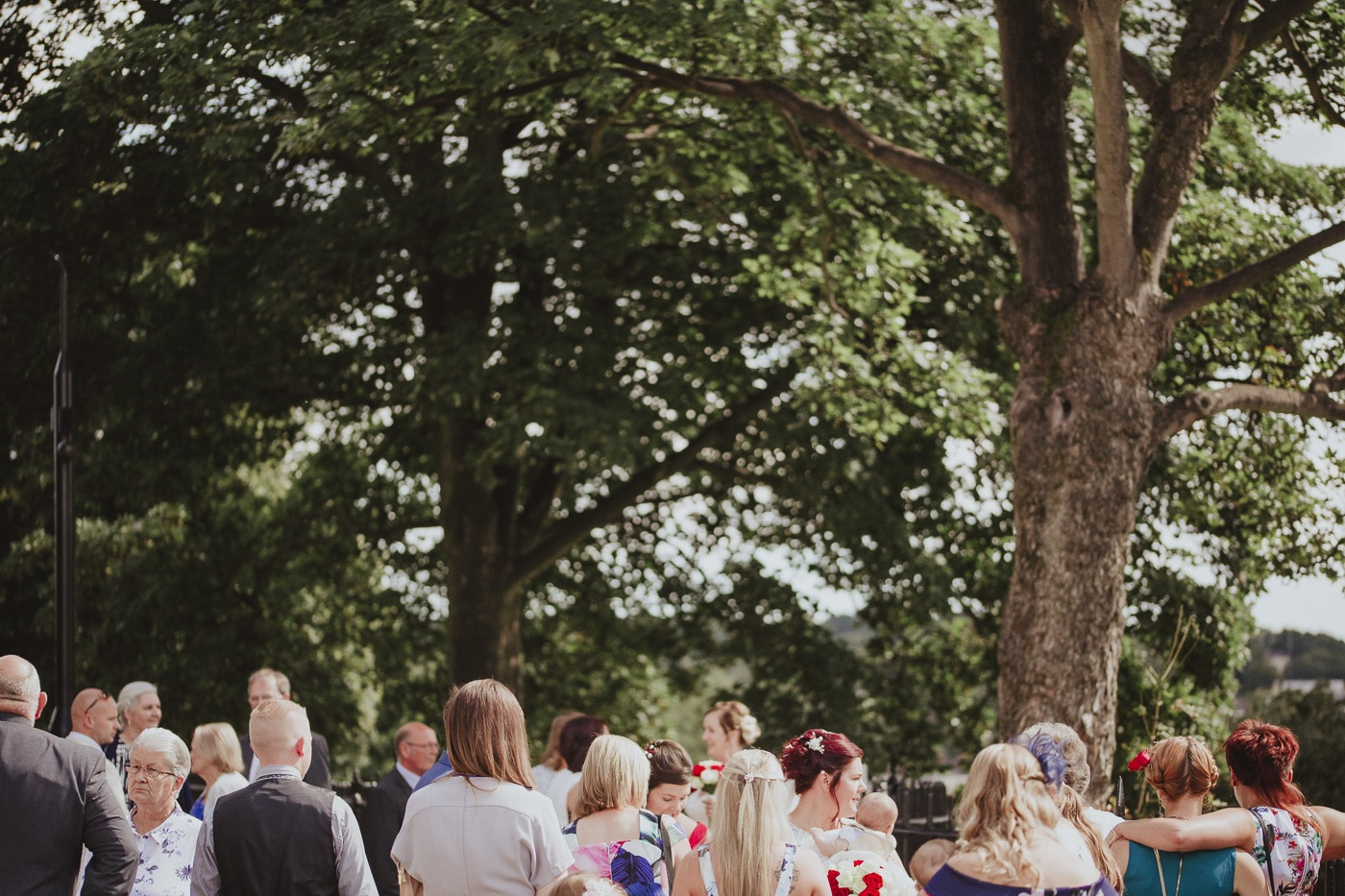 Guests surrounded by trees for wedding by Joshua Wyborn photography