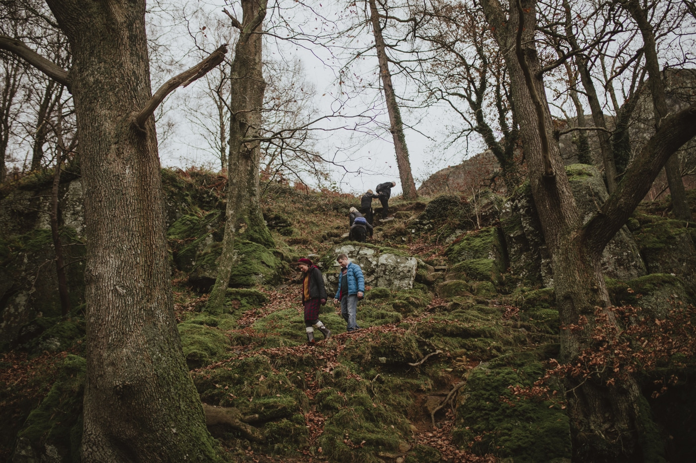 Groug of people walking up a moss covered hill amongst trees in Cumbria