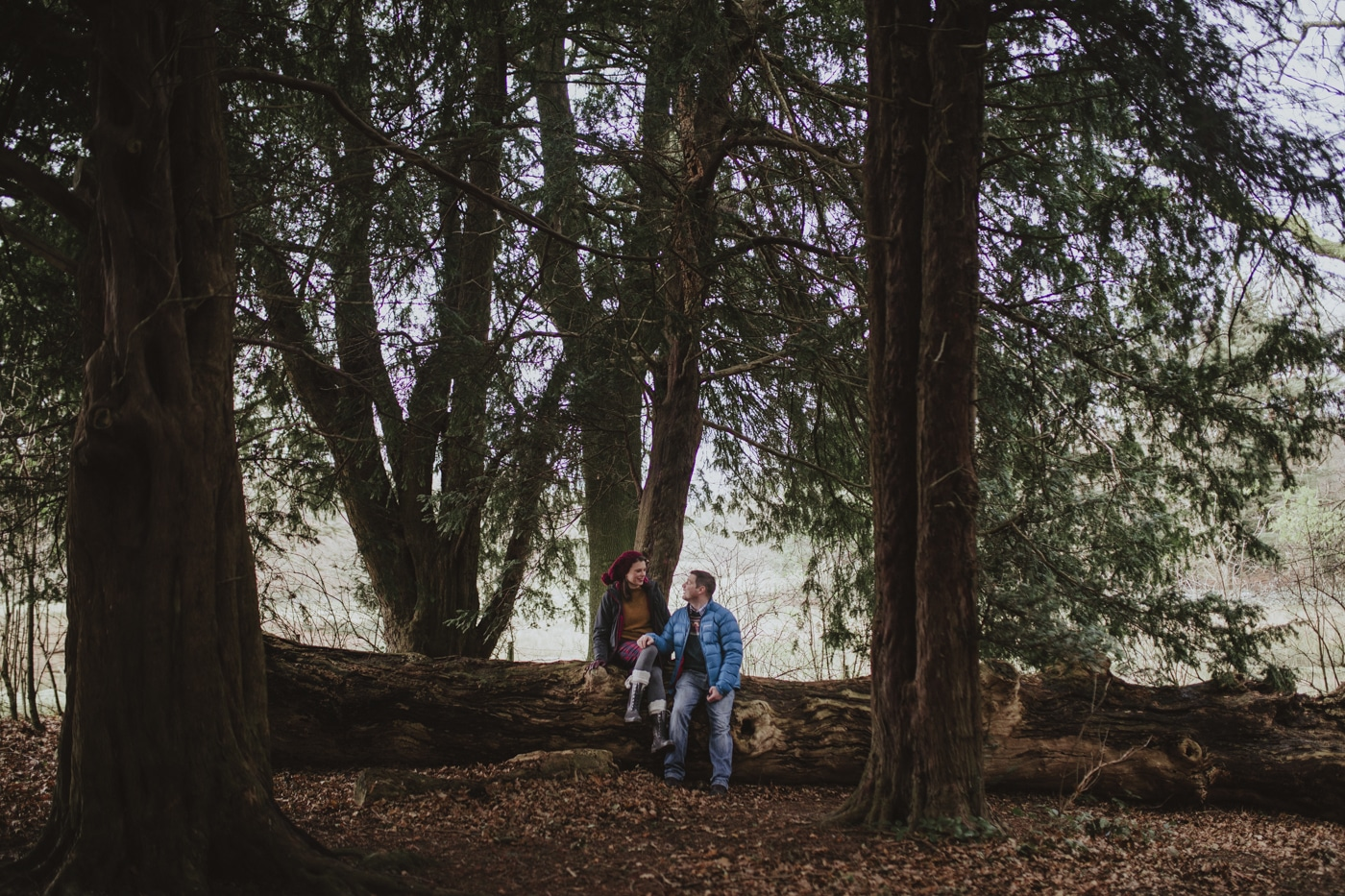 Couple in portrait session sitting on fallen tree by Joshua Wyborn Photography