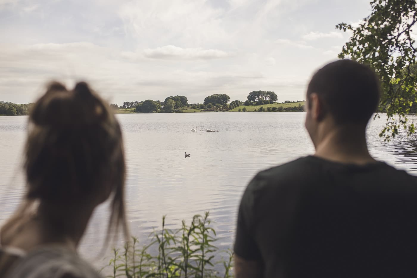 Couple Looking at swans at Talkin Tarn on a Couple Portrait session