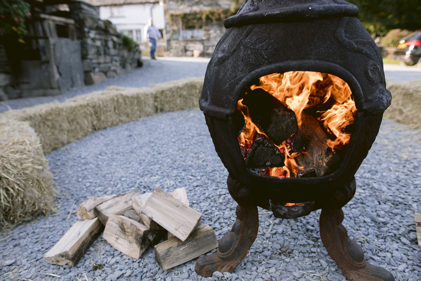 Fire Pit with Wood Portrait Shot
